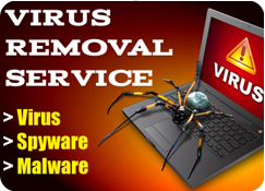 Virus Removal in Pune